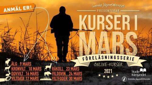 Mars Massa